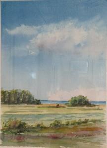 Utsikt över sjön2