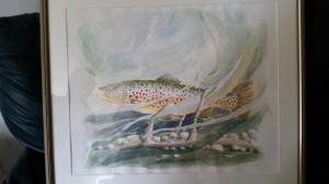 Laxlek   Akvarell