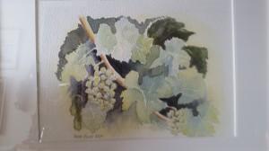 Vindruvor   Akryl